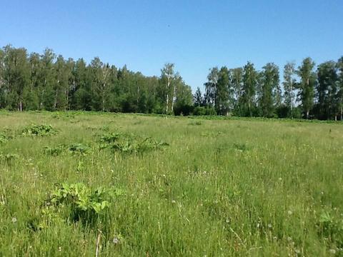 Продается земельный участок, Голыгино, 10 сот