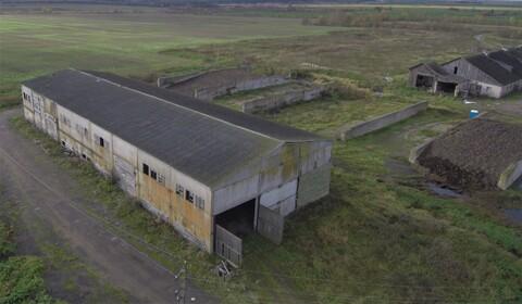 Животноводческий комплекс 8000 кв.м. - Фото 3