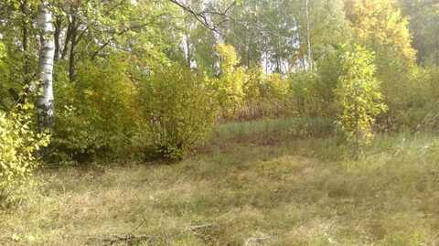 Продается земельный участок 25 соток в Дмитрове, ул. Внуковская. - Фото 3