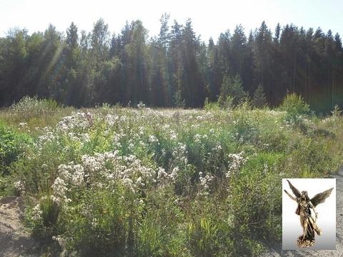 Земельный участок в 2-х км от города - Фото 5