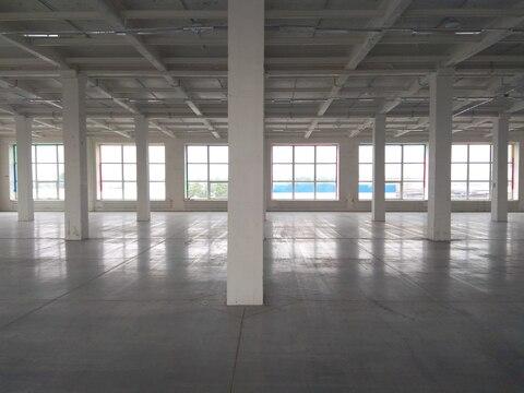 Производственно-складское помещение 1000 кв.м. - Фото 5