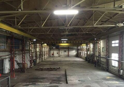 Продам производственное помещение 4167 кв.м. - Фото 4
