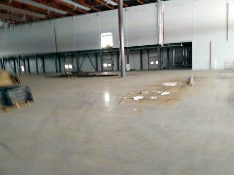 Производственно-складской комплекс класса А 6000 кв.м. - Фото 5
