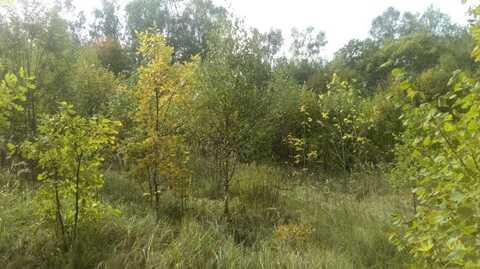 Продается земельный участок 25 соток в Дмитрове, ул. Внуковская. - Фото 4