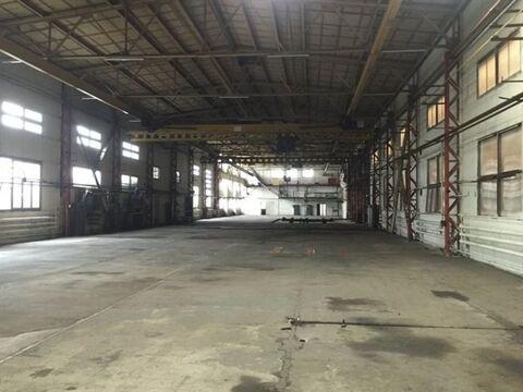 Продам производственное помещение 4167 кв.м. - Фото 3