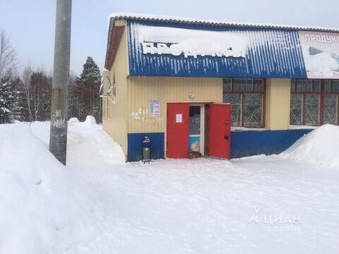 Дом в Свердловская область, Невьянский городской округ, пос. Таватуй . - Фото 1
