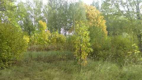 Продается земельный участок 25 соток в Дмитрове, ул. Внуковская. - Фото 2