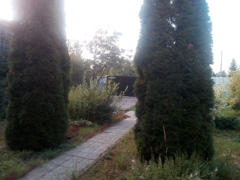 Сдам дом в Химках микрорайон Фирсановка - Фото 5