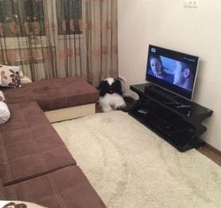 Квартира, ул. Новороссийская, д.8 - Фото 2