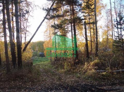 Продажа участка, Тюмень, Лесное - Фото 3