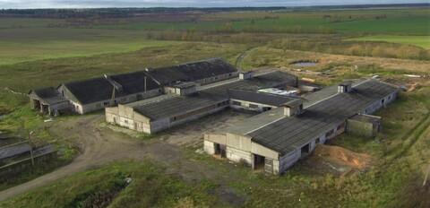 Животноводческий комплекс 8000 кв.м. - Фото 1