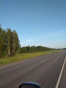 Продам участок, Промышленные земли Шорохово, Исетский район, ID объекта - 202263726 - Фото 1