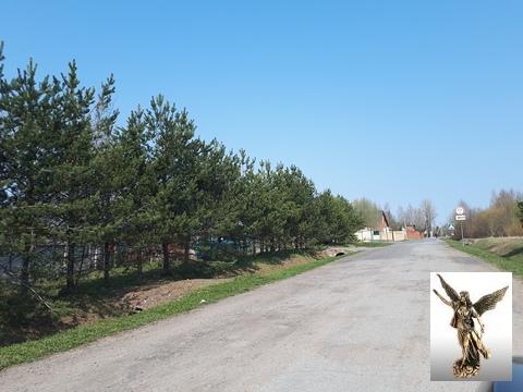 Земельный участок в ДНТ Поляна-2 (массив Белоостров) - Фото 5