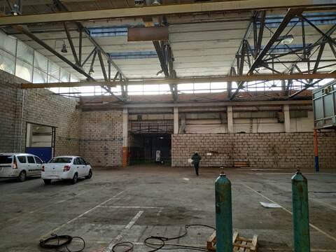 Производственно-складское помещение 1068 кв.м. - Фото 5