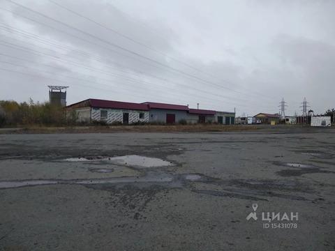 Склад в Курганская область, Курган просп. Конституции (500.0 м) - Фото 2