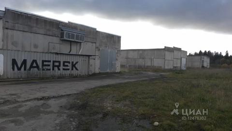 Склад в Ленинградская область, Ломоносовский район, Лопухинское с/пос, .