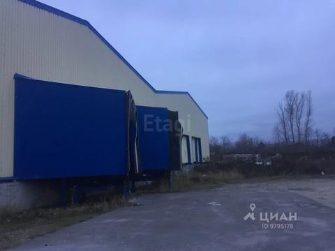 Офис в Татарстан, Казань Каучуковая ул, 5 (1600.0 м) - Фото 2