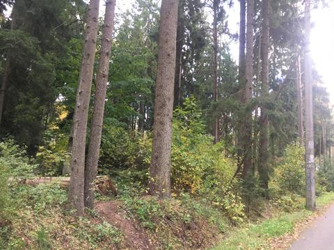 Продажа земельного участка, Комарово пос. - Фото 3