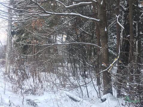 Можайское ш. 15 км от МКАД, Одинцово, Участок 7.5 сот. - Фото 4