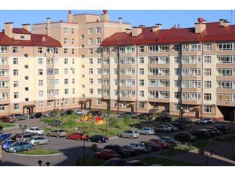 Предлагается к продаже ком.помещение на 1 этаже ЖК Династия Всеволожск - Фото 2