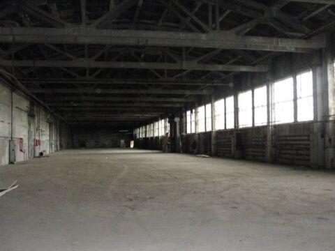 Продам производственное помещение 8600 кв.м. - Фото 1