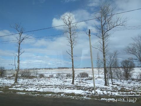 Продается земля пром назначения под склад, производство Тосненский р-н - Фото 2