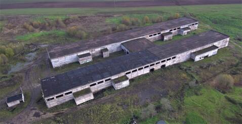 Производственный комплекс оп-12000 кв.м. h-11м. - Фото 5
