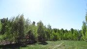 Продам участок 35 соток ИЖС на 2-ой линии Финского залива п. Глебычево - Фото 3