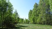 Продам участок 35 соток ИЖС на 2-ой линии Финского залива п. Глебычево - Фото 1