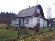 Продам дачу 42 кв.м, 9 сот, сад-во Белкозин д.Заплотье - Фото 3