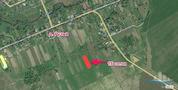 Продажа участка, Ручьи, Конаковский район, Деревня Ручьи - Фото 3