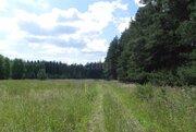 Продам участок, Промышленные земли Шорохово, Исетский район, ID объекта - 202263726 - Фото 4