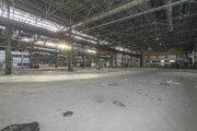 Сдам производственное помещение, Аренда склада в Тюмени, ID объекта - 900493219 - Фото 2