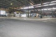 Сдам производственное помещение, Аренда склада в Тюмени, ID объекта - 900493219 - Фото 5