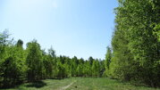Продам участок 35 соток ИЖС на 2-ой линии Финского залива п. Глебычево - Фото 2