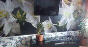 3-к кв. Новосибирская область, Бердск Вокзальная ул, 20 (63.0 м) - Фото 1