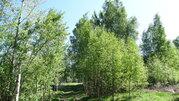 Продам участок 35 соток ИЖС на 2-ой линии Финского залива п. Глебычево - Фото 4