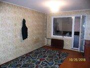 Продам просторную однокомнатную квартиру в Шушарах - Фото 1