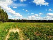 6,8 Га в деревне Милятино, 110 км от МКАД, Можайский р-н. - Фото 5