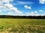 6,8 Га в деревне Милятино, 110 км от МКАД, Можайский р-н. - Фото 3